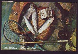 P1576 vintage used postcard ste-epiphane riv du loup trout quebec canada