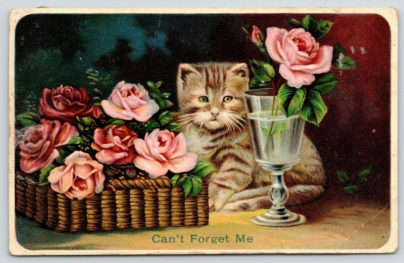Kitty Cat~Can't Forget Me Striped Tiger Kitten~Rose in Glass~Basket~Emboss~'11