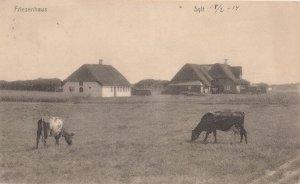 Friesenhaus Germany Old WW1 Postcard