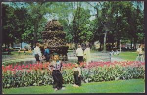 Tulip Time,Holland,MI Postcard BIN
