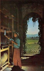 Louis M. Martini St. Helena, Napa County, CA Winery c1950s Vintage Postcard