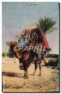 Old Postcard A Bassour