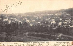 Hinsdale New Hampshire Birdseye View Of City Antique Postcard K97049
