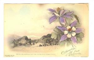 Gateway Garden of the Gods & Pikes Peak, Colorado, 00-10s