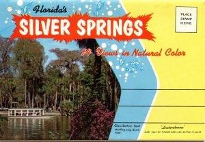 Folder - Silver Springs, Florida   (12 views + narrative)