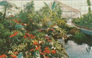 Canada Interior Tropical Aviary Calgary Zoo Calgary Alberta