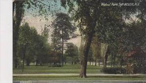 New York Syracuse Walnut Park