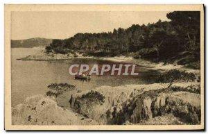 Modern Postcard Ile de Porquerolles Robert