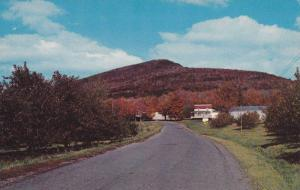 Entrance Road to Apple Orchard, The Kingdom of the Apple, Rougemont, Quebec, ...