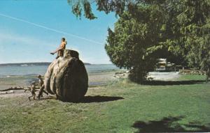 POWELL RIVER, British Columbia, Canada, 1940-1960's; Playtime At Willingdon B...