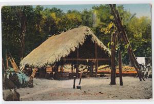 Type of Native Hut, Darien Panama