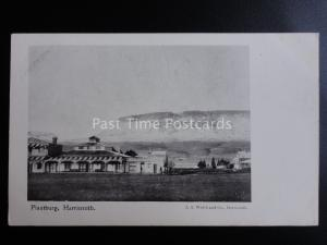 South Africa HARRISMITH Plaatburg c1909 old Postcard by A.S. Welch & Co