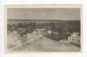 RP: Aerial View of Oasis / Vue Generale et l'Oasis,Touggourt,Algeria 1900-10s