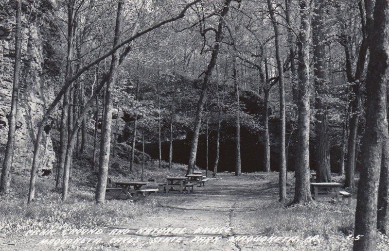 RP: MAQUOKETA, Iowa, PU-1954; Picnic Ground and Natural Bridge, Maquoketa Cav...