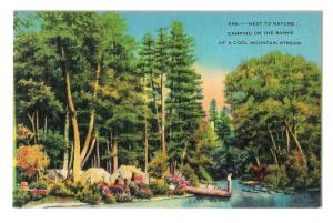 North Carolina Camping on Banks of Cool Mountain Stream NC Vintage Postcard
