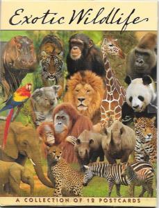 Exotic Wildlife 12 beautiful postcards in holder.  Elephant, Zebra, Parrot, etc.