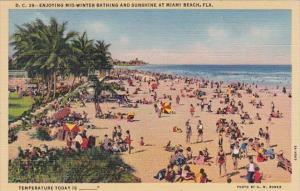 Florida Miami Beach Enjoying Mid-Winter Bathing and Sunshine Curteich