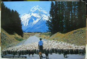 New Zealand Sheepdroving Mount Cook - posted