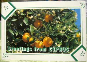 Cyprus Greetings from Oranges - posted 1992