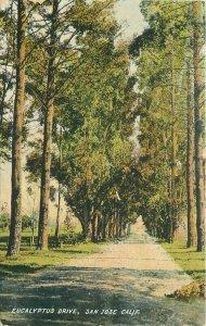 Curtis Henkle C-1910 Eucalyptus Drive San Jose California  Postcard 20-2832