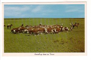 Round-Up Time in Texas, Cowboys and Cattle, Photo Texas Highway Department