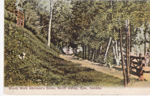 Shady Walk , Atkinson's Grove , NORTH HATLEY , Quebec , Canada , 00-10s