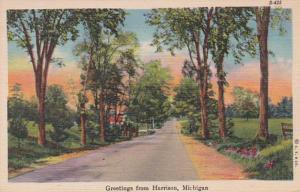Michigan Greetings From Harrison 1948 Curteich