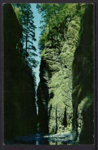 Oneonta Gorge Oregon BIN