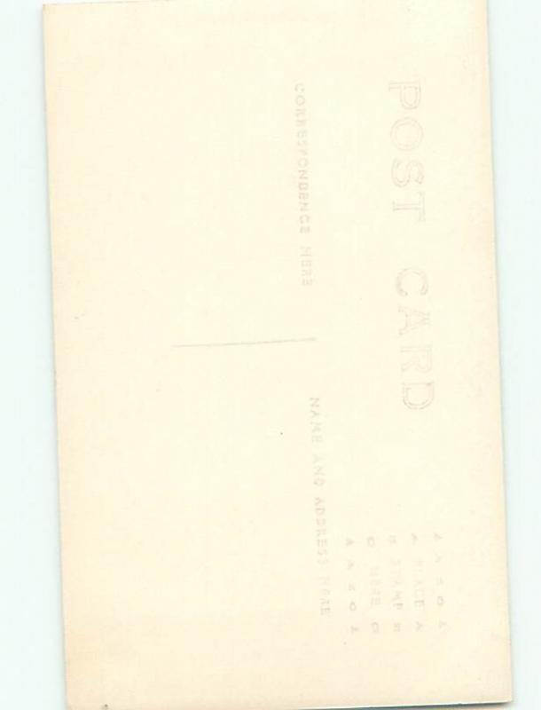 Old rppc NATURE SCENE Great Postcard AB0802