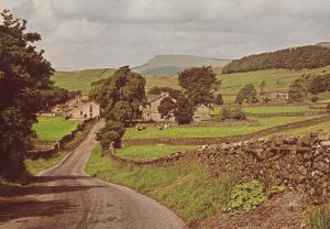 Hardraw Sheep Farm Postcard