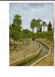 Woman Carrying Basket on Her Head, Elisas Fountain, Jericho, Palphot 9412