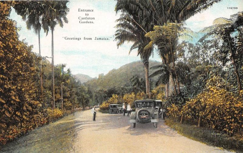 CASTLETON JAMAICA GREETINGS ENTRANCE TO GARDENS POSTCARD c1920s OLD CAR