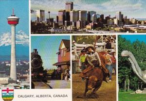 Canada Western Canadas Fastest Growing City Offers The Culture Calgary Alberta