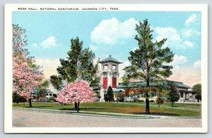 Johnson City TN~Veteran's National Sanitarium Mess Hall~Pink Blossom Trees 1920