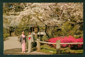 Japanese Tea Garden San Francisco Golden Gate Park California CA Postcard