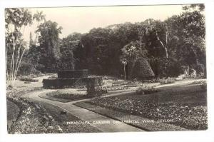 RP  Peradeniya Gardens ornamental Walk, Ceylon, 20-40s