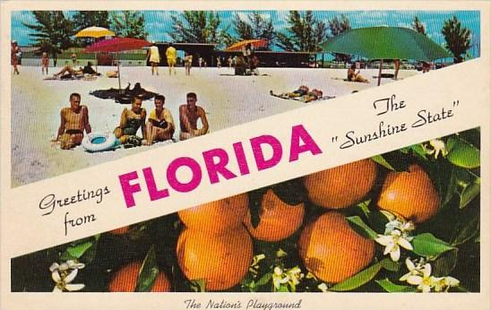 Florida Greetings From Florida The Sunshine State The Nation's Playground 1964