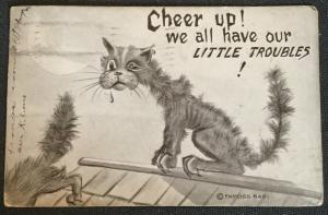 "Vintage Postcard Used Cat ""Cheer Up..."" LB"