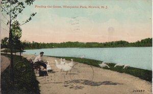 NEWARK NJ - FEEDING THE GEESE at WEEQUAHIE PARK - 1912 - MAN SITTING ON BENCH