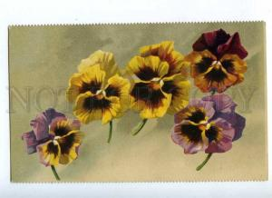 187649 Flying PANSY Flowers by C. KLEIN vintage GOM PC
