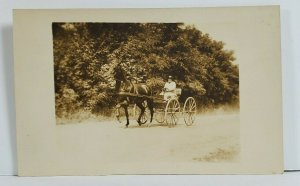 Rppc Older Woman with Horse & Carriage c1917 Postcard N18