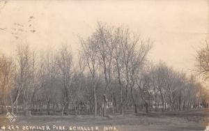 Schaller Iowa~Schaller Park~Shelter & Houses Through Trees~1909 Puck RPPC