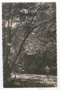 RP, La Forêt, A. E. F., Africa, 1920-1940s