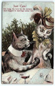 VTG Postcard Just Cats 1910 ANTHROPOMORPHIC Drinking Wine OH Ohio Cancel A4