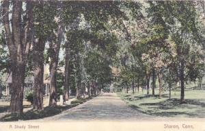 Hand-colored, A Shady Street, Sharon, Connecticut, 00-10s