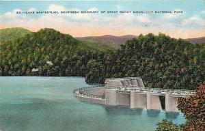Great Smoky Mountains Nat'l Park NC~Lake Santeetlah Hydroelectric Dam~1940s PC