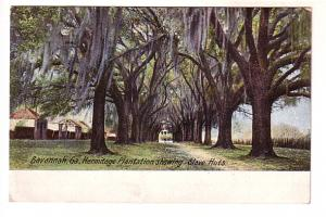 Hermitage Plantation Showing Slave Huts, Savannah, Georgia, Leighton Co