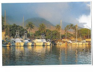 Lahaina Harbor Sunset Maui Hawaii a Hilo Hattie Collector Card 4 by 6