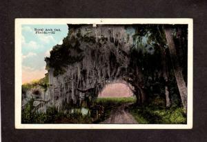 FL Royal Arch Oak Florida Postcard Daytona and Ormond