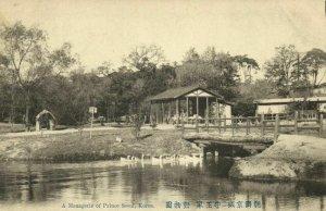 korea coree, SEOUL, Menagerie of the Prince,  Zoological Garden (1910s) Postcard